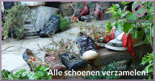 alle schoenen verzamelen - website