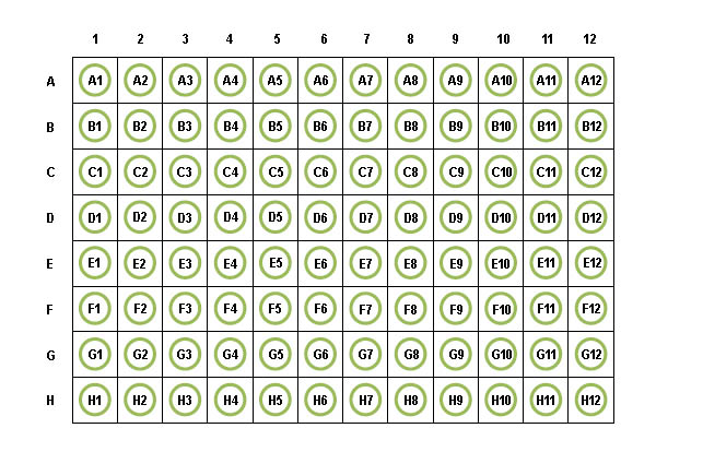Amazing Elisa 96 Well Plate Template Download Free Software