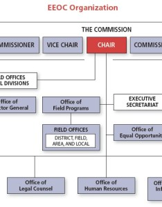 Eeoc organizational chart also the commission rh