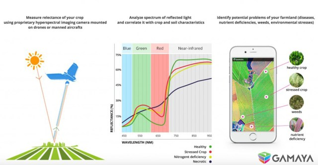 Hyperspectral process in agriculture