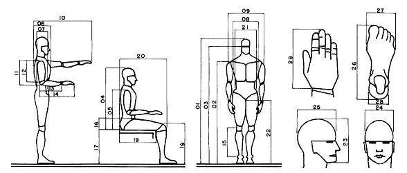 Antropometria kevincapacho for Antropometria y ergonomia