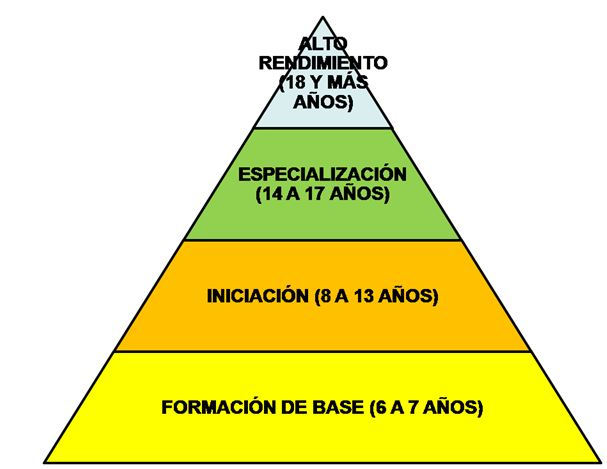 Resultado de imagen de piramide de mas comun a mas especifico deporte