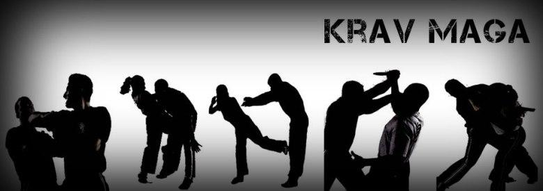 Ομάδα Krav Maga