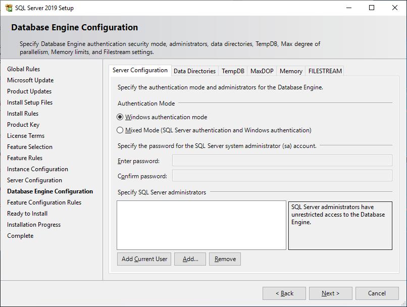 Microsoft Sql Server 2019 - Setup - Database Engine Configuration - Server Configuration