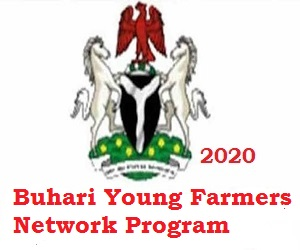 Photo of Buhari Young Farmers Network Program Jobs Recruitment for Young Nigerians 2020 apply here