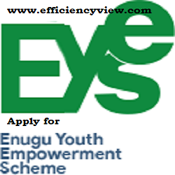Photo of e-YES Recruitment Form Portal 2020/2021 | how to register for Enugu Youth Empowerment Scheme
