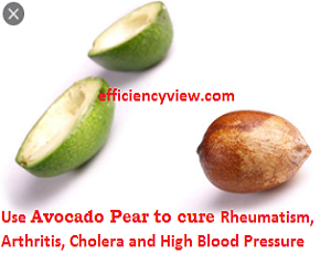Photo of Use Natural Herbs to permanently Cure Rheumatism, Arthritis, Cholera and High Blood Pressure