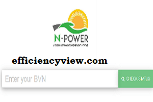 Photo of Npower Selection Process 2020 for Batch C Pre-selected Applicants