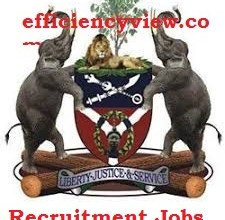 Photo of Osun State Government Recruitment for Statistician 2020 apply here