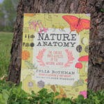 The Perfect Book for Curious Little Minds: Nature Anatomy Review