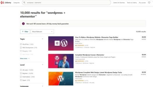 Udemy WordPress Elementor