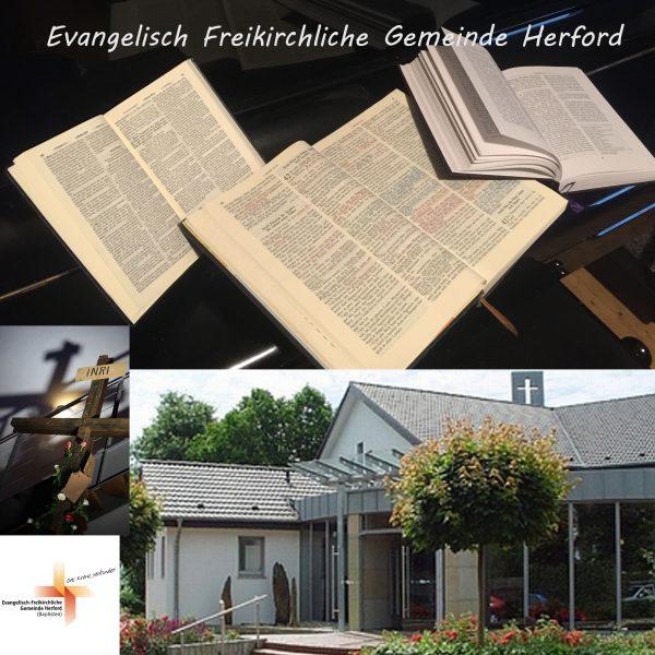 Predigt am 11.11.2018 in der EFG Herford