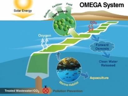nasa proyecto omega biocombustibles