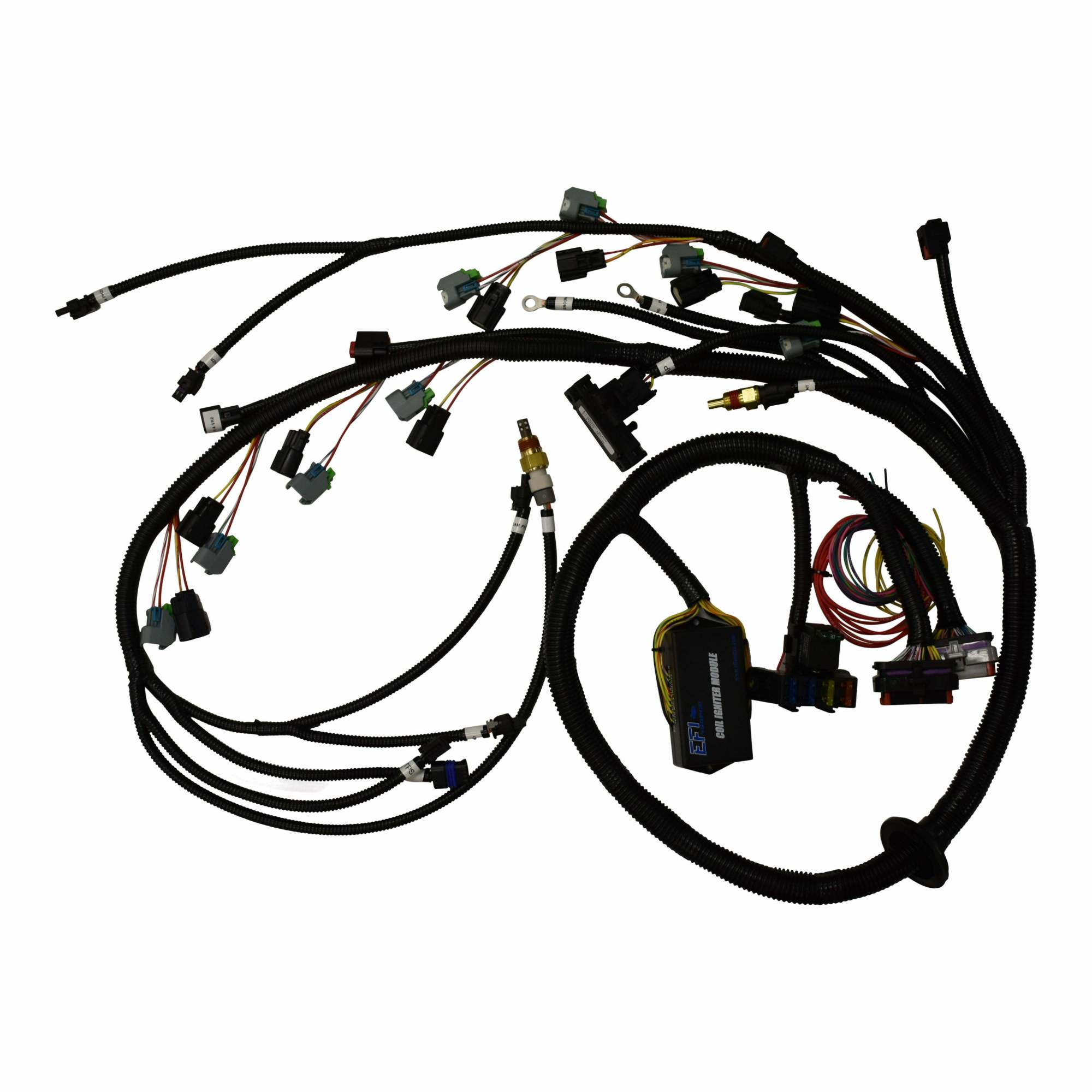 hight resolution of ford coyote 2013 ms3 gold box harness efi source gold box wiring ford