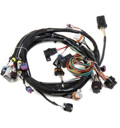 holley 558 102 main harness ships free at efisystempro com ls1 ls6 rh efisystempro com main wiring harness for countryman 2012 main wiring harness cub cadet  [ 1000 x 1000 Pixel ]