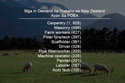 4000+ Work in New Zealand