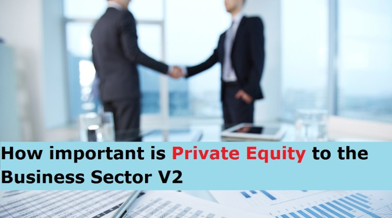 How important is Private Equity to the Business Sector V2