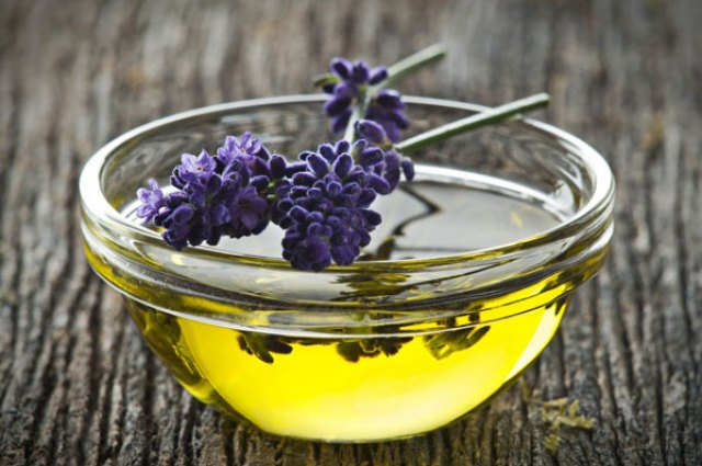 olympic-lavender-oil