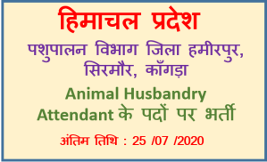 Animal Husbandry Attendant Recruitment – District Hamirpur , Sirmaur, Kangra