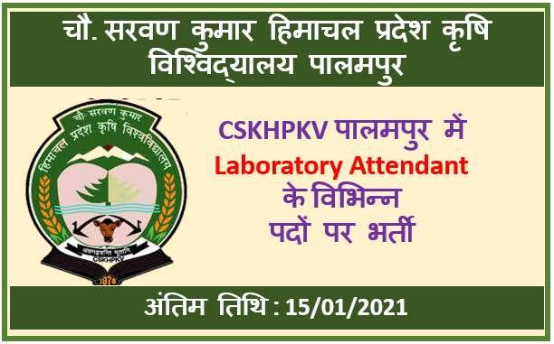 CSKHPKV Laboratory Attendant Recruitment 2021: Apply Now