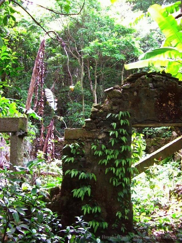 石牆之上原來是另一條荒廢村落,早已煙沒山野之中。