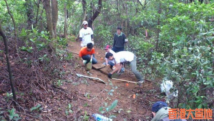 為保護樹根,用石塊堆上面,再覆蓋泥土。