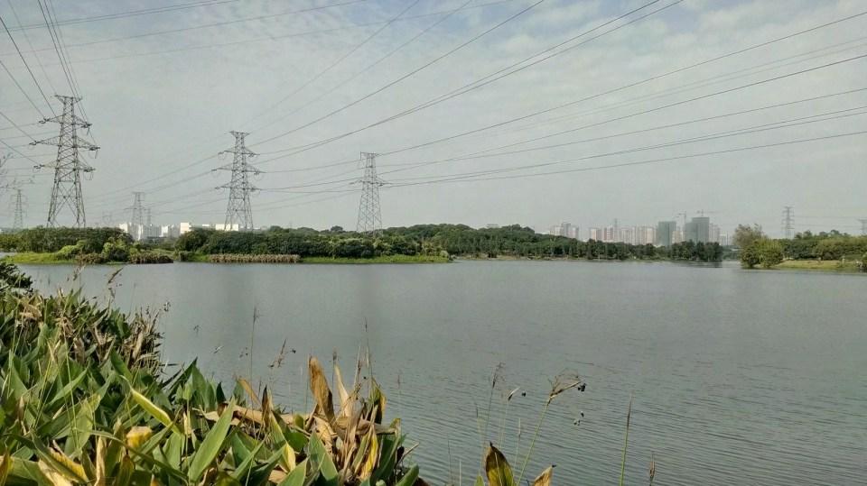 荔香濕地公園。