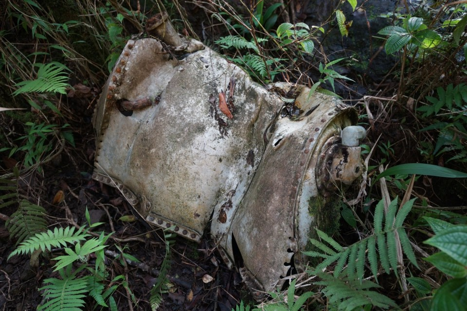 尋找 1944 年墜毀 B-24 轟炸機 -- Aiea Loop Trail