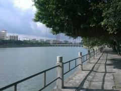 恩平錦江河日景。