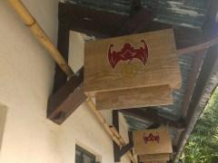 鏡蓉書屋養了一些蝙蝠。