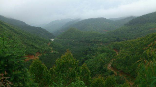 翠綠山野裏是 XC 繞山泥黃山路。
