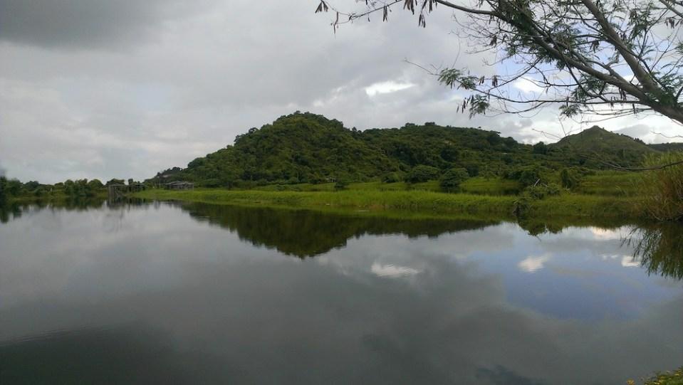 天氣驟明驟雨,魚塘倒影美致。