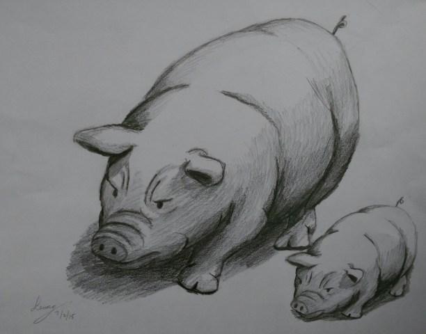 側面要同時表現豬的立體構造和表情,是頗難的角度。