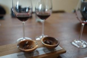 酒莊的 wine tasting and pairing。