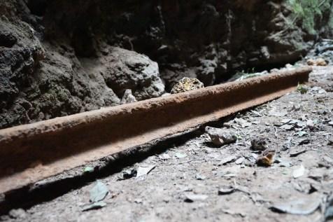 初部清理鐵軌上泥土。