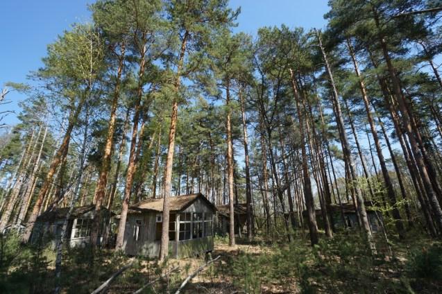 營地有九十幾幢小木屋。