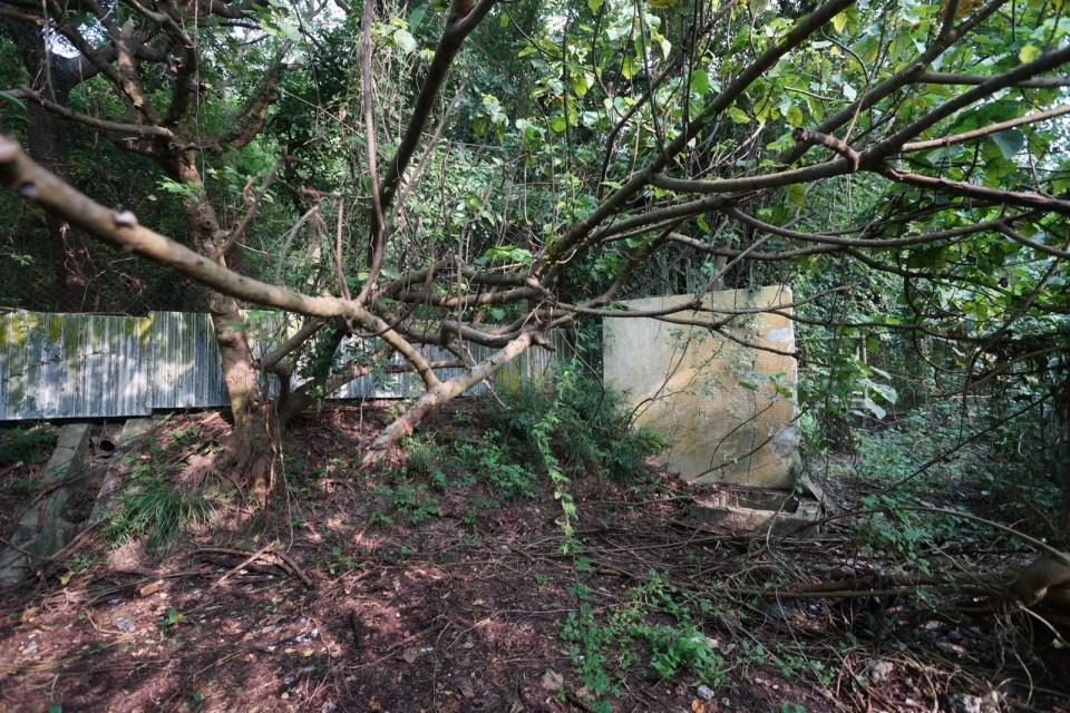 控制室附近的護土牆。