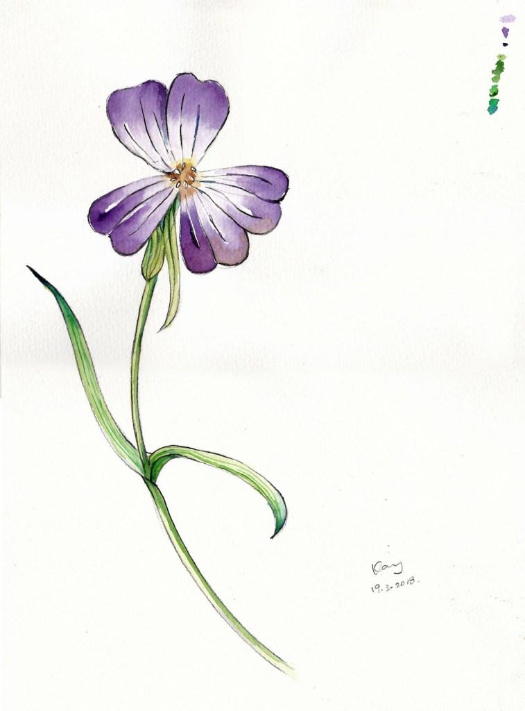 花(課堂示範)