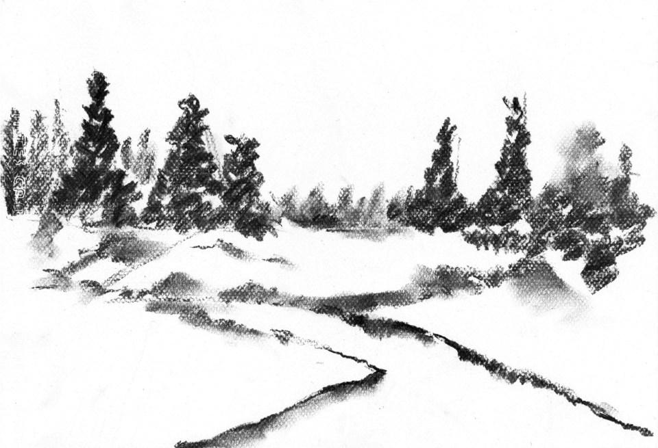 森林(課堂示範)