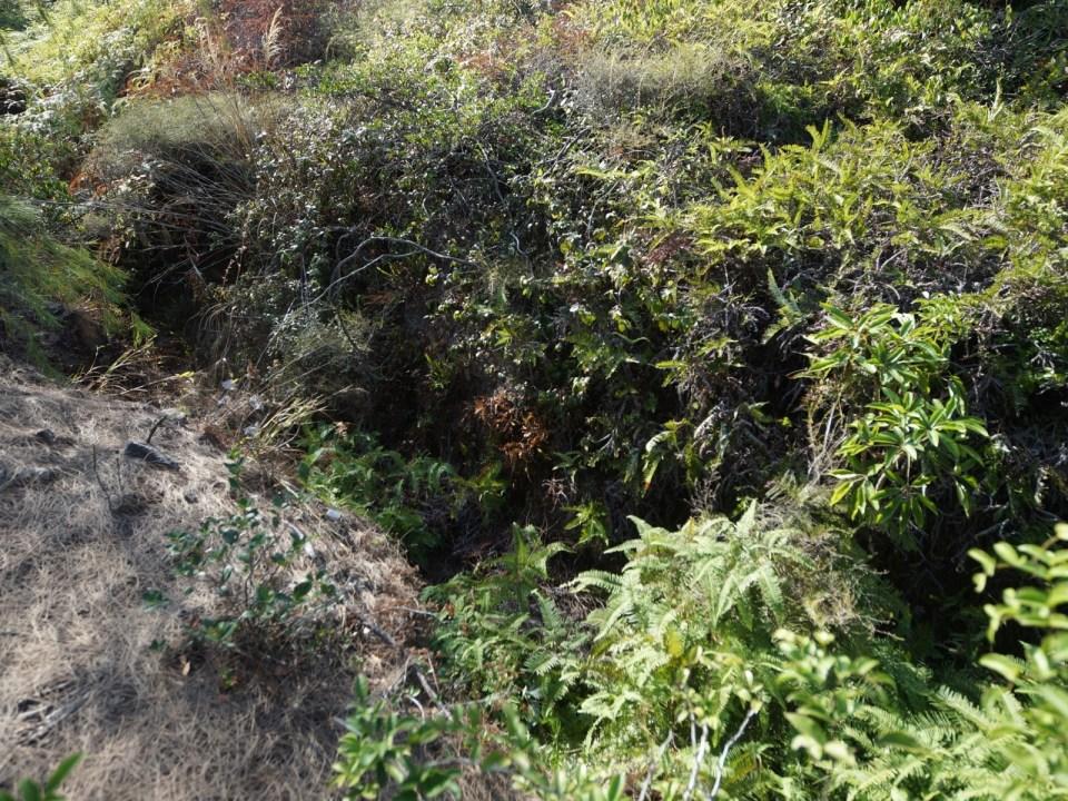 連接軍營、監測堡及防空洞的戰壕。
