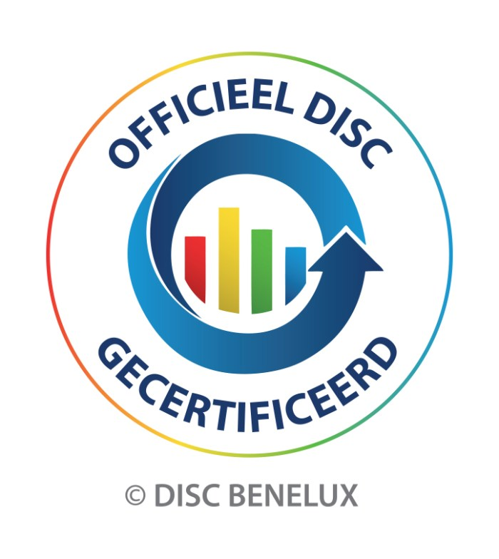 DISC ANALYSE