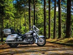 Harley_Davidson-CVO-LIMITED-2-300x225 Title category