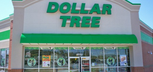Dollar Tree Employee Pay Stubs