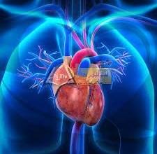 Photo of ثقب القلب عند الأطفال | أعراضه .. تشخيصه .. علاجه