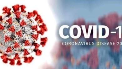 Photo of كيف يعمل فيروس كورونا .. و كيف يحاربه الجهاز المناعي عند الإنسان ؟