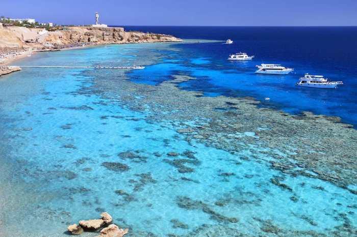 Un voyage Safaga en Mer Rouge réussi, plongée à Safaga en Egypte au TOP
