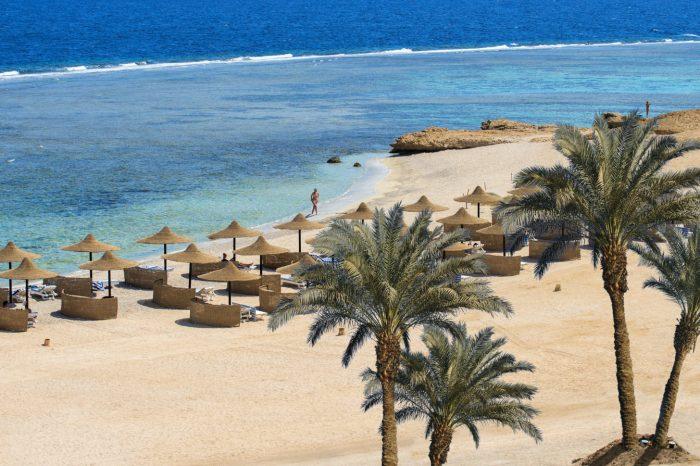 Un voyage Marsa Alam en Mer Rouge réussi, plongée à Marsa Alam en Egypte au TOP