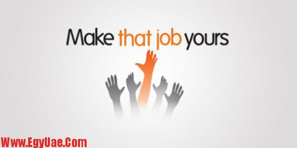 job1-590x294