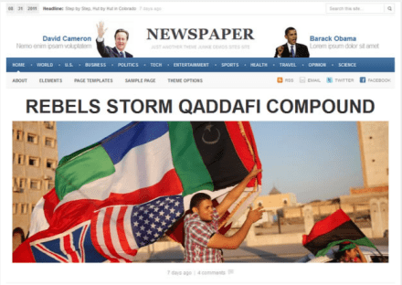 Newspaper WordPress Premium Theme Preview