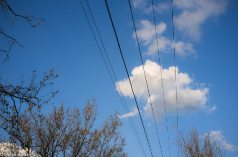 Wires and Sky